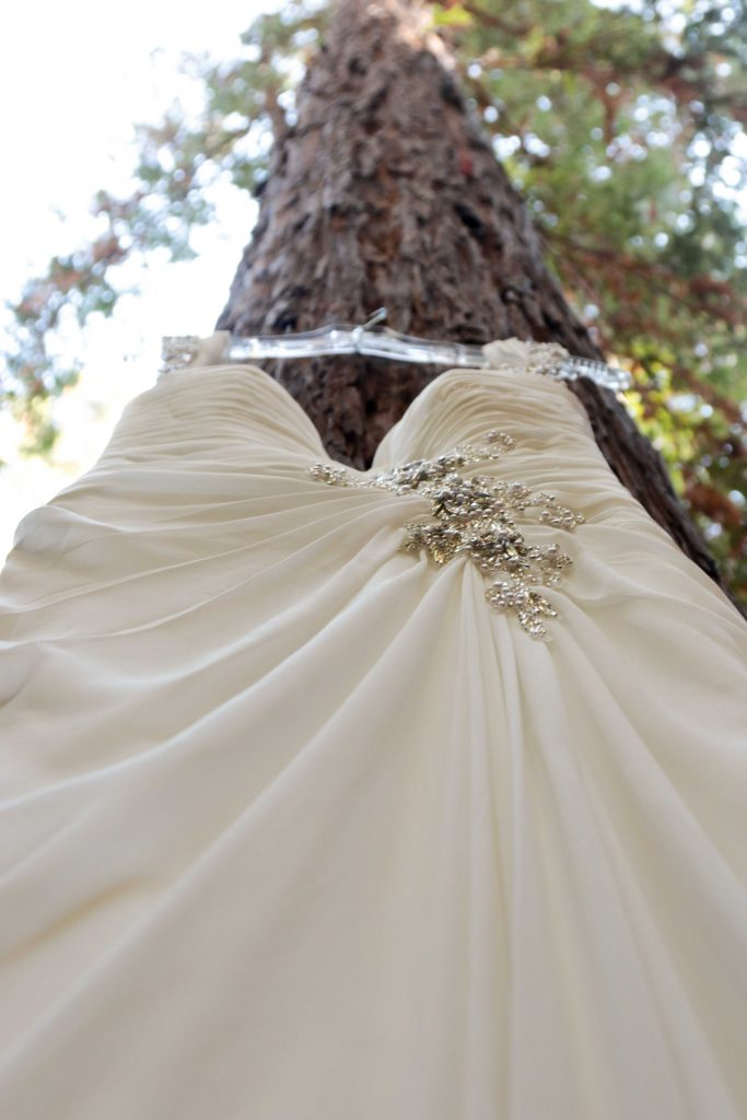 david's bridal dress, wedding in the woods
