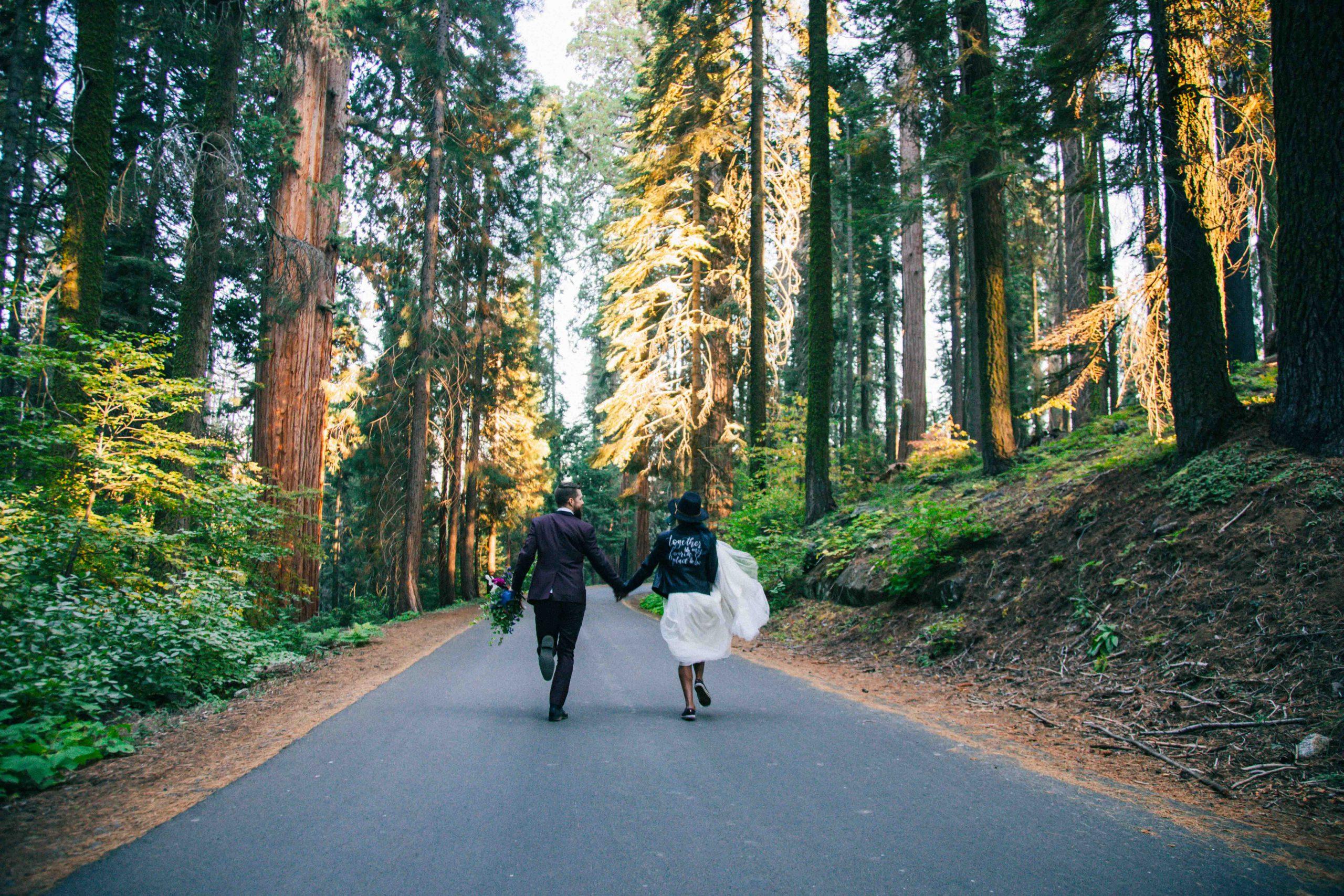 Sequoia Elopement Sequoia Wedding Photography Wedding in the Woods